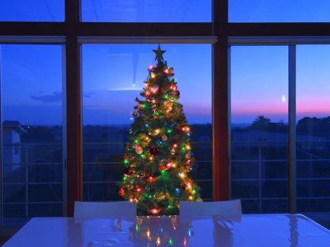 j-m-christmastree2